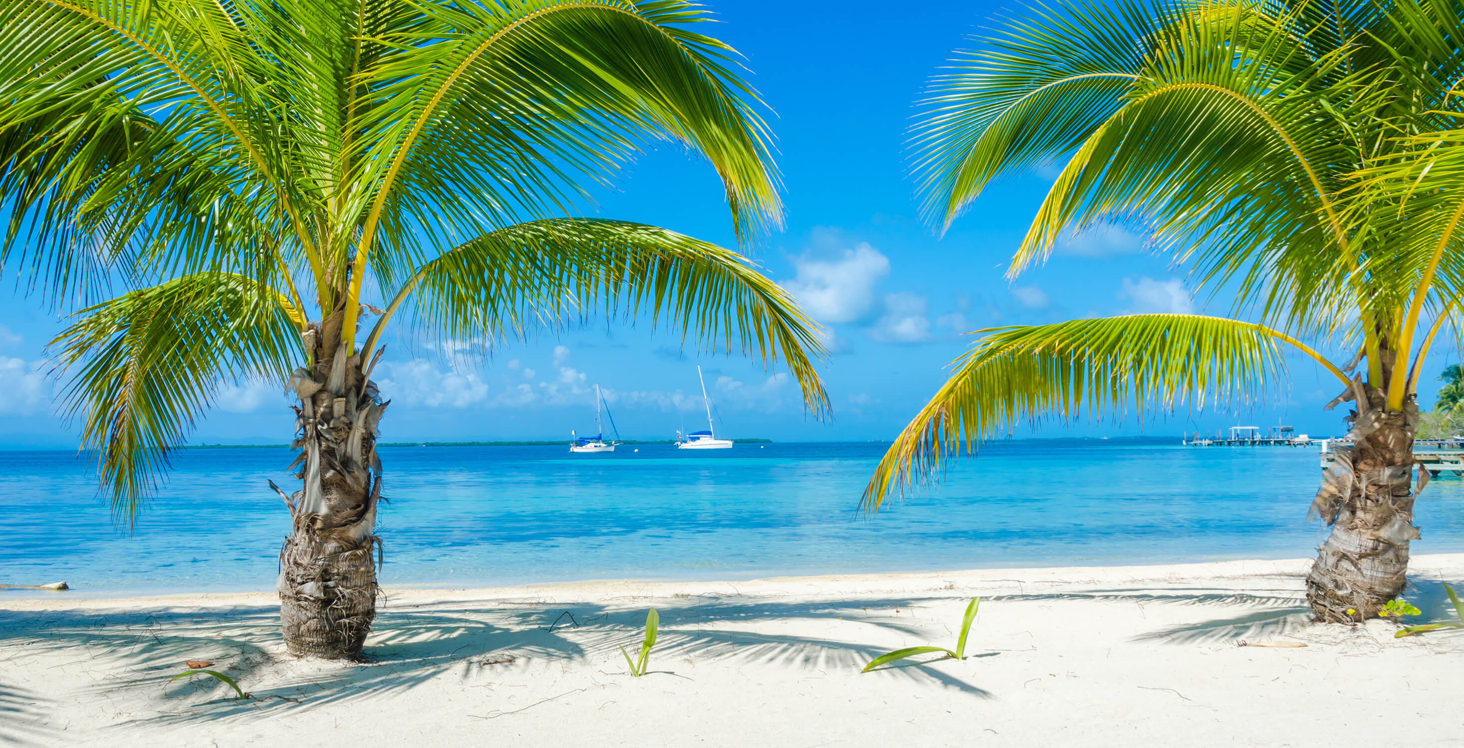 Retire in Belize: Everything You Need to Know
