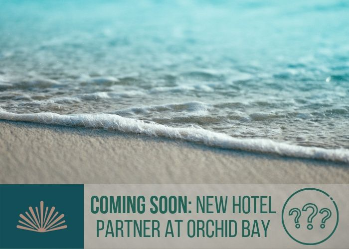 A Major Hotel Brand Is On Its Way to Orchid Bay
